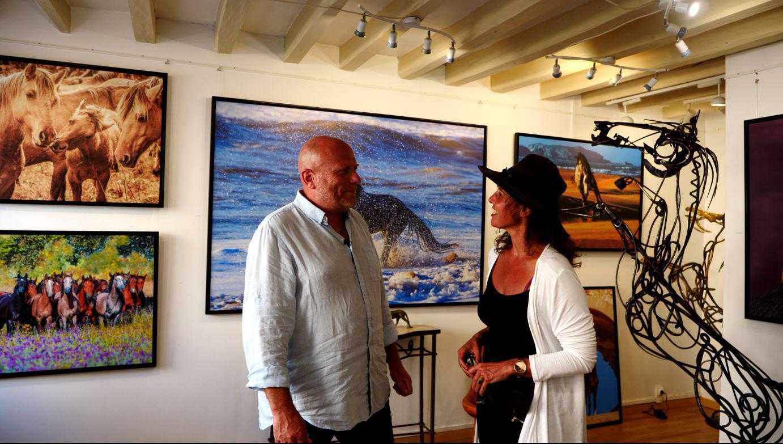 patrice guéritot expose ses photographies équines à la galerie roz in winter